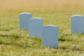 selective focus of tombstones on green grass and blue sky in graveyard
