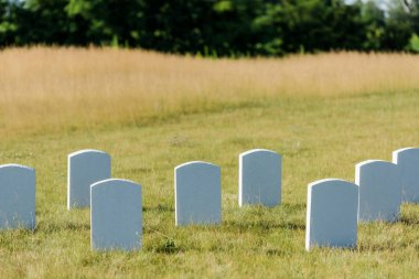 Blank tombstones on green grass and blue sky in graveyard stock vector