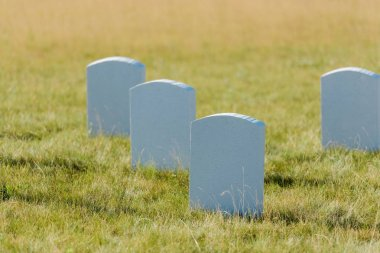 Selective focus of tombstones on green grass and blue sky in graveyard stock vector