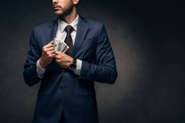 cropped view of businessman putting cash in pocket on black