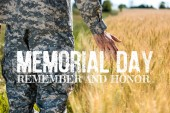 selective focus of soldier touching wheat in golden field with memorial day, remember and honor illustration