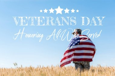 soldier in cap and military uniform holding american flag in golden field with veterans day, honoring all who served illustration
