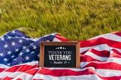 üres palatboard Köszönjük veteránok illusztráció amerikai zászló csillagok és csíkok a zöld fű