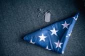 označit za psa a složit americkou vlajku na pohovce doma
