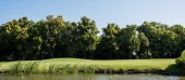 Panoramaaufnahme von grünem Gras und Bäumen in der Nähe des Sees und blauem Himmel