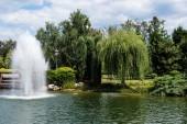 Fényképek szökőkút a tó közelében, zöld fák és növények fű