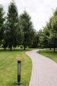 szelektíven összpontosítani kültéri lámpa közelében út és fák zöld fű