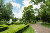 sétány közelében zöld növények, fák és szökőkutak ellen, kék ég