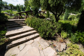 green bushes and stones near stairs and wooden bridge in park
