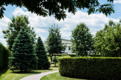 zelené borovice a keře na trávě u chodníku a bílá budova v parku