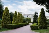 Gehweg, Straßenlaterne und grüne Tannen in der Nähe des Weißen Hauses