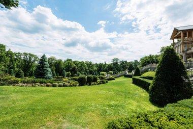 Luxury house near green trees on fresh grass in park stock vector