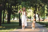 Ganzkörperansicht der schönen Mädchen in weißem Kleid und Strohhut, die mit Golden Retriever auf dem Weg gehen und wegschauen