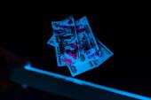 selektivní zaměření člověka držící UV lampu blízko ruských peněz na černém