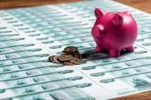 selektivní zaměření růžového Prasátko v blízkosti kovových mincí ruských peněz