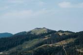 Fotografie zelené stromy v horském údolí proti obloze s mraky