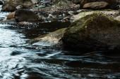 szelektív középpontjában a sziklák zöld penész közelében áramló patak