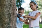 Fotografie glückliches Kind, das Baumstamm durch Lupe betrachtet, während es mit dem Finger auf Freund zeigt