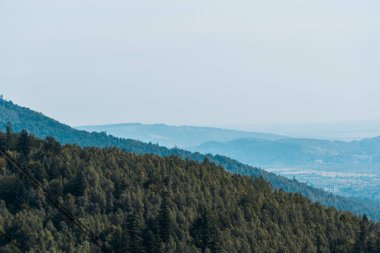 Mountains near green trees against blue sky stock vector