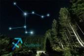 tmavá krajina se stromy, noční hvězdná obloha a souhvězdí Sagittarius