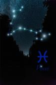 dunkle Landschaft mit nächtlichem Sternenhimmel und Sternbild Fische