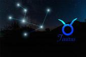 tmavá krajina s noční hvězdnou oblohou a souhvězdím Taurus