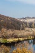 rybník s vodou v blízkosti zelených stromů proti modré obloze