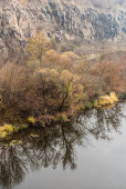 Photo reflection of trees in lake with clear water