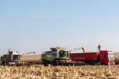 LVIV, UKRAJINA - 23. října 2019: zemědělci v traktorech sklízejí pšenici proti modré obloze