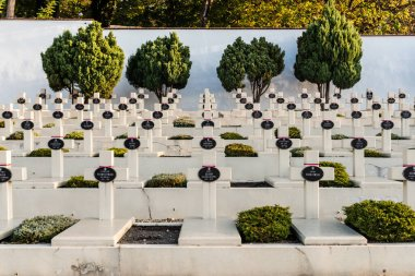 LVIV, UKRAINE - OCTOBER 23, 2019: tombs with crosses and lettering near green trees on lviv defenders cemetery stock vector