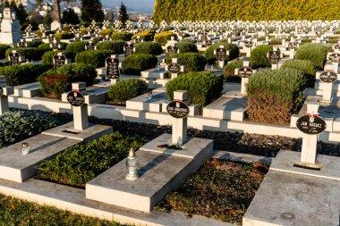 LVIV, UKRAINE - OCTOBER 23, 2019: sunlight on graves with crosses and lettering near green plants on lviv defenders cemetery stock vector