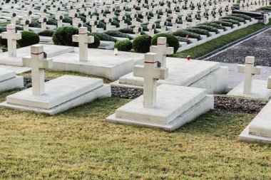 LVIV, UKRAINE - OCTOBER 23, 2019: polish graves and stone crosses in lychakiv cemetery in lviv, ukraine stock vector