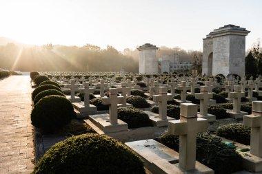 LVIV, UKRAINE - OCTOBER 23, 2019: polish graves with stones crosses near green plants in lychakiv cemetery in lviv, ukraine stock vector
