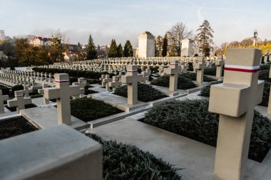 LVIV, UKRAINE - OCTOBER 23, 2019: polish tombs with stone crosses in lychakiv cemetery in lviv, ukraine stock vector