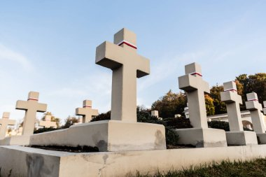 LVIV, UKRAINE - OCTOBER 23, 2019: low angle view of stone crosses on polish graves in lychakiv cemetery in lviv, ukraine stock vector