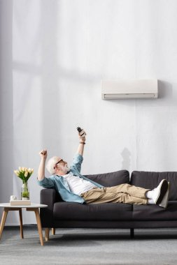 Senior man showing yeah gesture while holding remote controller of air conditioner on couch stock vector