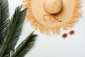 vrchní pohled na zelené palmové listy, slaměný klobouk a sluneční brýle na bílém pozadí