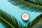 top view of green palm leaves and coconut half on blue background