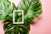 top view of fresh green palm leaves and square frame on pink background