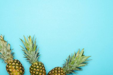 Top view of ripe pineapples on blue background stock vector