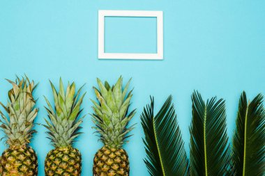 Top view of green palm leaves and ripe pineapples near square empty frame on blue background stock vector