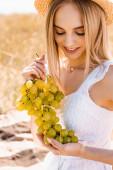 stylový blondýny žena v letním oblečení držení svazek zralých hroznů v terénu