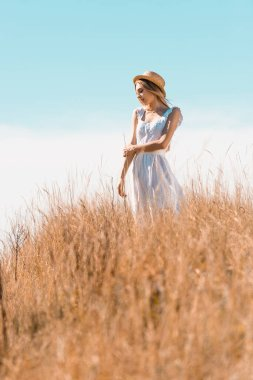 Selective focus of young woman in white dress and straw hat looking away while standing on grassy hill stock vector