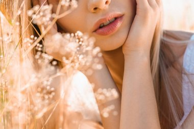 Cropped view of young woman touching face near wildflowers, selective focus stock vector