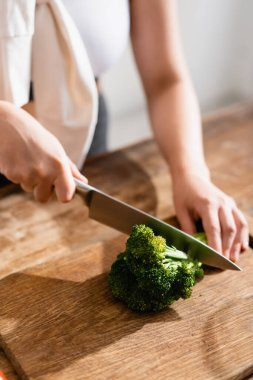 Cropped view of woman cutting fresh broccoli on chopping board stock vector