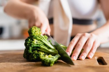 Close up of woman cutting fresh broccoli on chopping board stock vector