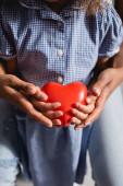 Afričanky americká dívka s matkou drží srdce model v dlaních