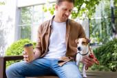 mladý muž v ležérní oblečení drží papírový šálek, zatímco sedí na lavičce v blízkosti jack Russell teriér pes