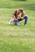 fiatal férfi alkalmi ruhák játszik Jack Russell terrier kutya a gyepen a városi parkban