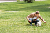 Selective focus of young man playing with jack russell terrier in park